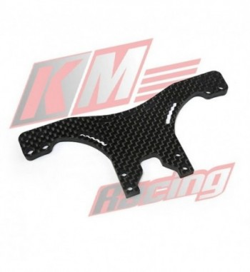EVO3-109 4mm Rear Carbon...